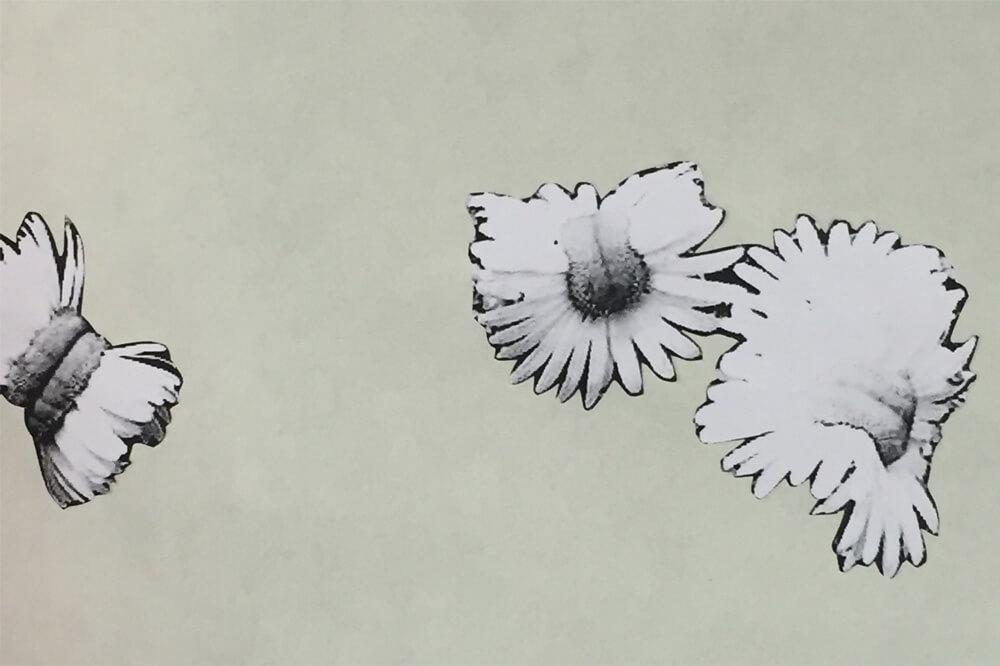 Studio Stefania Miscetti | Contemporary Art Rome | Exhibition: Silvia Giambrone: Dillo con i fiori