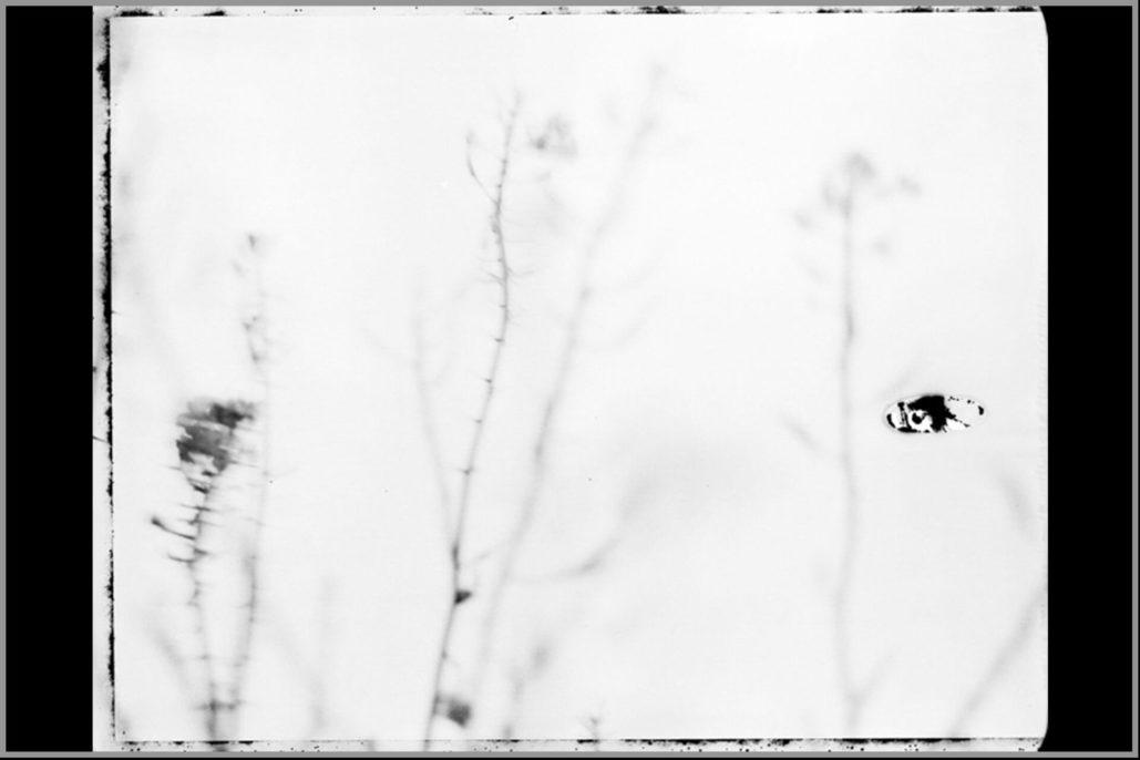Marco Delogu, Natura bianca #17, 2008, warm tone baryta paper, 150x120 cm