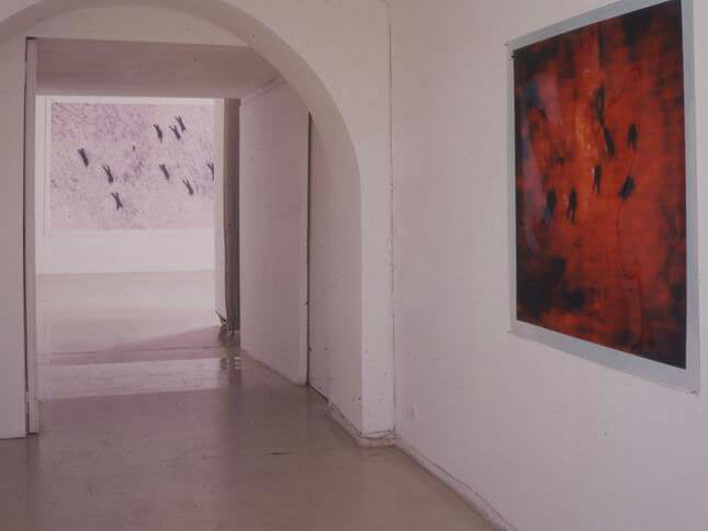 Michal Rovner, Recall seeing, 1998, exhibition view