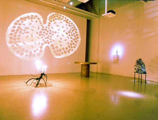 Michele Oka Doner, On Fire, 2000, exhibition view