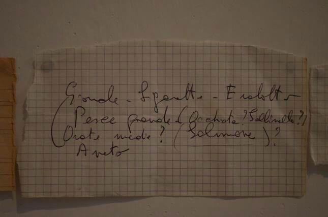 Patrizia Cavalli, I miei splendidi giorni tutti uguali, 2013, Studio Stefania Miscetti, exhibition view