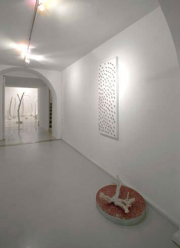 Luca Guatelli, The white park, 2007, exhibition view
