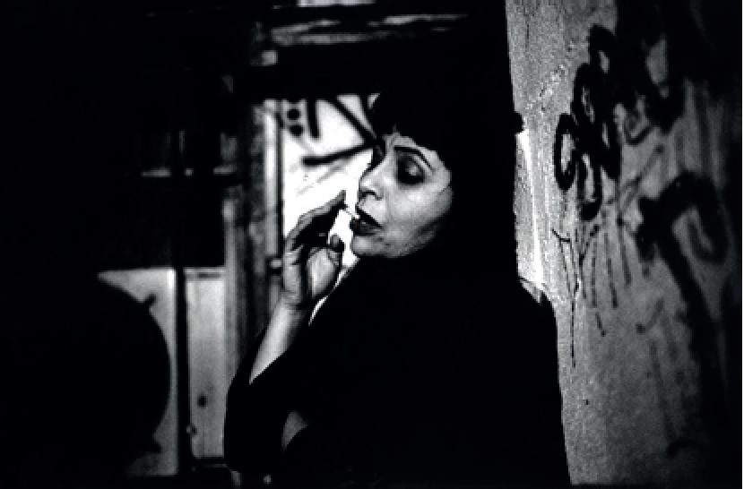 Lina Pallotta, Shouting In The Dark, 2009